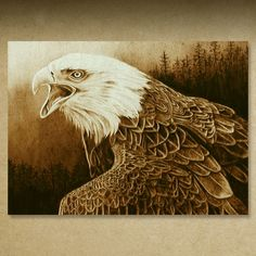 Gallery 5 Pyrography Illustrations on Birch by Cate McCauley
