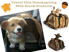 Traveling for the #Thanksgiving holiday? Don't leave home without your #SturdiProducts!