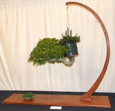 saule bonsai | Bonzaï, l\'art à l\'êtat d\'art. | Pinterest | Bonsaï ...