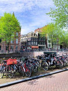 Rotterdam e Amsterdam: giretti e scoperte – Tegamini