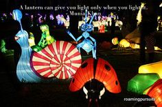 Lantern Carnival Festival Lights, Globe Lights, Lanterns, Carnival, Artisan, Quotes, Painting, Color, Quotations