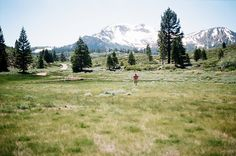 Mammoth Mountain Meadow