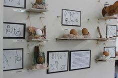 A small sample of children's work on display. - In this project, children created bird-nests using clay and we tested each nest to see if it would protect an egg.