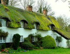Cottages at Cottered by Jayembee69 on Flickr.@kendrasmiles4u