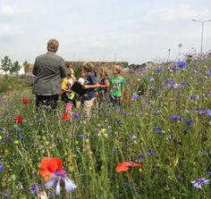 Children educated at Ecopark, Alphen aan den Rijn (landscape design by Vollmer  Partners)
