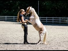 Liberty Training with Nemo the Miniature Horse - YouTube More