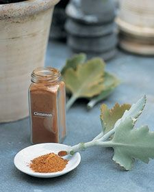 Using cinnamon to keep your cuttings from rotting. clever and easy.