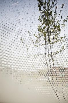 White Block Gallery by SsD features fritted glass facades Facade Architecture, Contemporary Architecture, Landscape Architecture, Futuristic Architecture, Glass Design, Wall Design, House Design, Fritted Glass, Facade Pattern