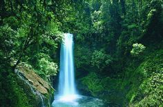 Costa Rica - La Paz Waterfall Gardens. I came here for a trip and can't wait to go back!