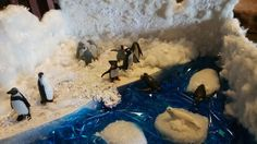 PENGUIN  DIORAMA,  Materials used: Box, Card board, Styrofoam, cotton balls, floam (painted white), snow flake paper punch, white house paint, white glitter paper on top of foam and blue glitter paper under water, small decretive white glitter balls and Love. Made by Hadley 3rd grade project