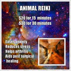Animal Reiki, Energy Services, Reduce Stress, Healing, Recovery