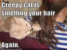 Creepy cat is smelling your hair again.