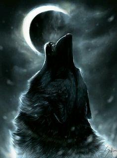 #Laluna