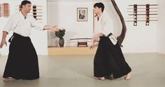 Aikido and martial arts gifs