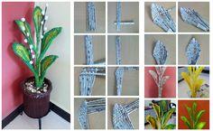News paper plant Courtesy: Nilu's Creation