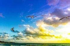 Mayan Riviera Mexico, Sunrise, Clouds, Amazing, Beach, Outdoor, Instagram, Playa Del Carmen, Outdoors