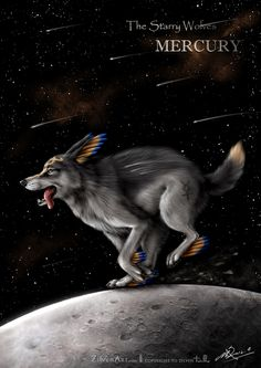 """One of the main characters of """"The Starry Wolves"""". Mercury is the messenger of Solariona.Check the links below if you are interested in this original cr. The Starry Wolves - Mercury Anime Wolf, Fantasy Wolf, Fantasy Art, Fantasy Creatures, Mythical Creatures, Art Magique, Twilight Wolf, Cartoon Wolf, Wolf Artwork"""
