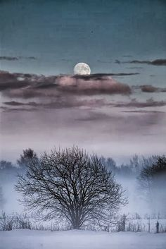 58 Ideas for photography landscape snow mists Beautiful Moon, Beautiful World, Beautiful Things, Shoot The Moon, Moon Pictures, Full Moon Photos, All Nature, Winter Beauty, Winter Wonder