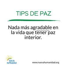 (160) SocialGest Paz Interior, Calendar, App, Life, Apps, Life Planner, Menu Calendar