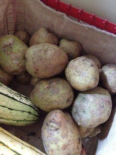 Potatoes – Sometimes Freezing is Better