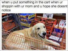 36 Hilarious Memes For Your Enjoyment