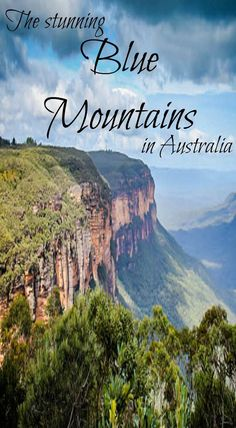 A must see detestation in Australia is the Stunning Blue Mountains. One top Australia adventure is Hiking in the Blue Mountains. Just outside of Sydney is the stunning Blue Mountains. From the big city, head towards Katoomba where you will be enamored with scenery and wildlife around every corner. The best part of the Blue Mountains is the abundance of hiking trails to check out. Read about 4 must do adventures in Australia at www.divergenttrav...