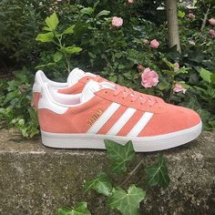 huge discount 502af cc591 Adidas Gazelle 2016 are available from 36 to 40 online and un store.  adidas