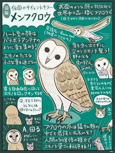ふしぎ生き物シリーズ、メンフクロウの図解です。ブログにあげるの忘れてました、すみません。ところで生き物シリーズについて重要なお知らせがあるんですが、告知のタイミングを計りかねてます。まあいっか、もうちょっと先でも…。 Animals And Pets, Cute Animals, Rare Birds, Japanese Language, Marketing, Cute Art, Mammals, Dog Cat, Creatures
