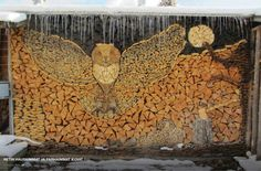 Gorgeous wood pile :)
