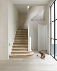 Gaston poses next to a gorgeously refined 1940′s staircase, which Belgian architect/designer Vincent Van Duysen reworked to its most minimal essence. Photo by David Spero via T Magazine