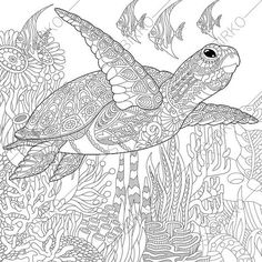 3 Coloring Pages of Sea Turtle from ColoringPageExpress Shop.  Hand drawn illustrations both for adults and kids designed by Oleksandr Sybirko.  After purchasing you will receive an INSTANT DOWNLOAD of coloring pages in JPEG and PDF formats in high resolution.  - Image is a high quality and printable on your home computer.  - Watermarks will not appear on downloaded files.  - No physical product will be mailed or shipped!  You will receive your file to download from Etsy within 5 mins of…