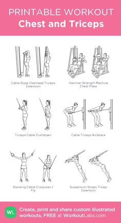Chest and Triceps visual workout Tricep Workout Women, Chest Workout Women, Gym Workout Plan For Women, Biceps Workout, Ladies Gym Workout, Bowflex Workout, Biceps And Triceps, Chest And Tricep Workout, Chest Workouts