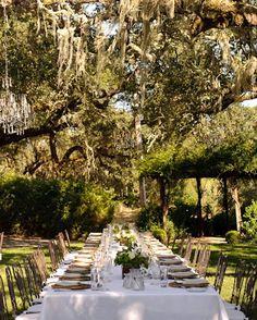outside wedding dinner- love the trees