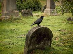 Ritual to Honor the Ancestors at Samhain