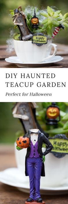 Just in time for Halloween, learn how to make a Haunted Halloween Teacup Garden with succulents, a teacup and saucer, and Halloween miniatures. It's the perfect Halloween craft for kids! #halloween #teacupgardens #kidscrafts via @https://www.pinterest.com/fireflymudpie/
