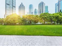 Espaces verts : la solution anti-pollution et canicule en ville