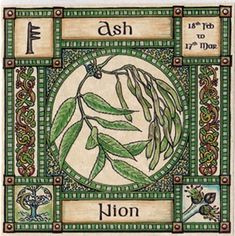 Show details for Ogham Tree Card | Ash Tree, 18th Feb to 17th Mar