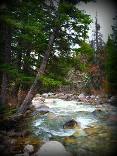Camping along Rock Creek south of Red Lodge, Montana  Photo by Erin Thormahlen