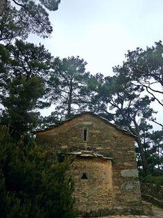 Άρωμα Ικαρίας: Το  μικρό δασάκι  της Παναγίτσας