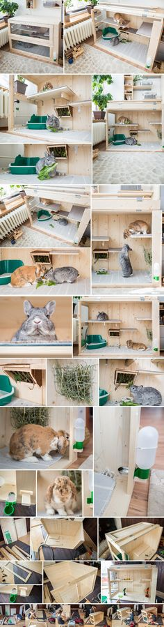 Our new bunny indoor wood apartment that I made for them, the love sleeping on the shelves :)