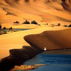 Oasis de Layoune, Sahara de Marruecos