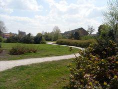 Wandelpad door het park Dwingeland in Hoogeveen. Rechts staat de vroegere hervormde MULO. Nu is daar de MAVO gevestigd van het Roelof van Echten College. Wordt binnenkort afgebroken.