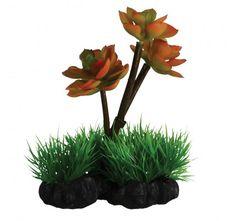 "Underwater Treasures Desert Flower on Rock - 8"""