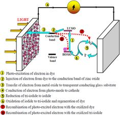 Schematic representation on the operating principle of dye sensitized solar cell. Renewable Energy, Solar Energy, Solar Power, Solar Roof Tiles, Alternative Energy Sources, Best Solar Panels, Solar Panel System, Roofing Systems, Sustainable Energy