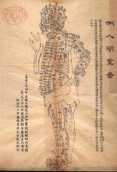 Acupuncture Chart from Late Qing Dynasty