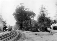 Rondebosch, Cape Town. 1900's ? Old Pictures, Old Photos, Cape Town, South Africa, Past, Old Things, Landscape, History, City