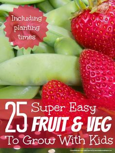 25 super easy fruit and veg to grow with kids @Maaike Anema Anema Boven make lists ... #garden #kids #play