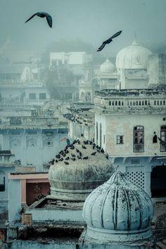 Pushkar skyline Piet Van den Eynde / india