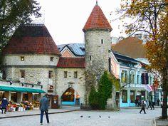 Es la puerta de entrada a la ciudad, una de las principales calles de los turistas. Dos hermosas torres que invitan al viajero a entrar en la vieja Tallin y a recorrer sus pequeñas calles y sus gentes. El casco antiguo de Tallín es pequeño y se puede recorrer cómodamente a pie.