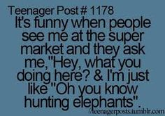 """Teenager post It's funny when people see me at the super market and they ask me """"Hey, what you doing here? & I'm just like """"Oh you know hunting elephants"""" Funny Teen Posts, Teenager Posts Sarcasm, Teenager Meme, Funny Teenager Quotes, Teenager Posts School, Funny Quotes For Teens, Es Der Clown, Haha So True, Just Dream"""